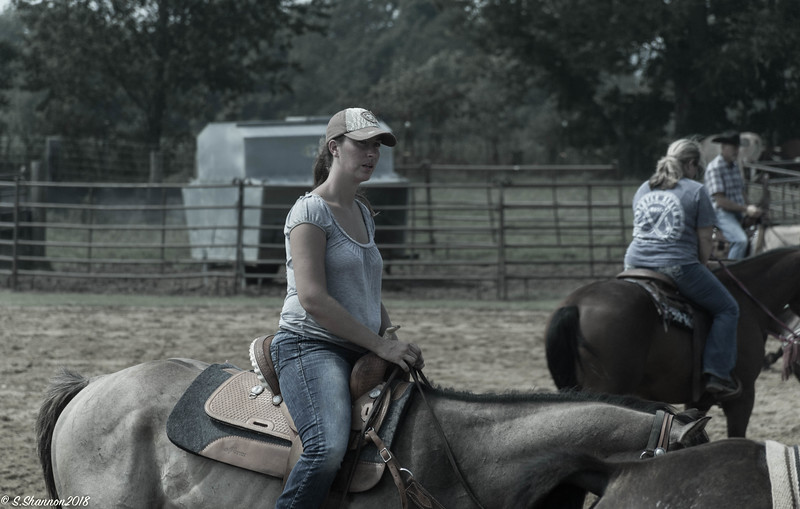 Rolling Hill Equine-2726