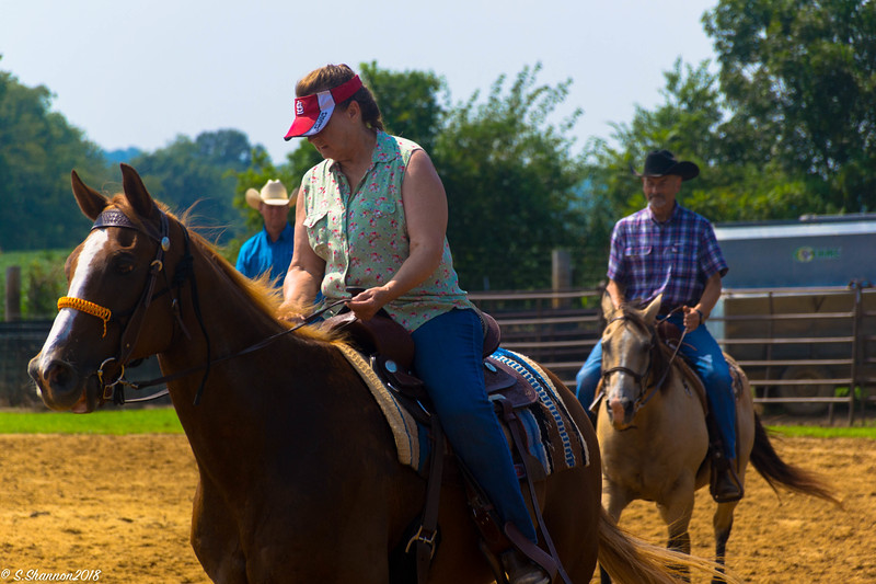 Rolling Hill Equine-2764