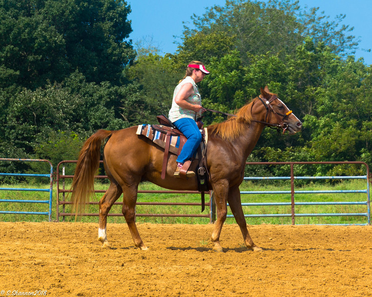 Rolling Hill Equine-2802