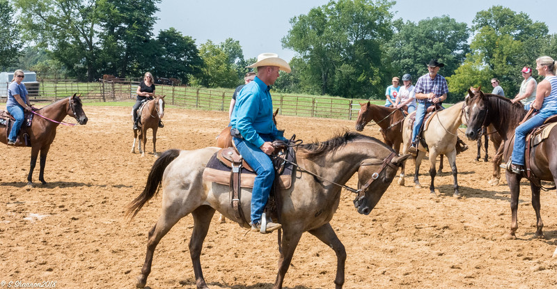Rolling Hill Equine-6475
