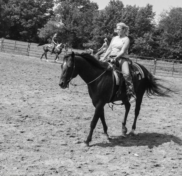 Rolling Hill Equine-6511