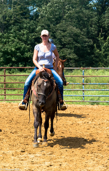 Rolling Hill Equine-2709
