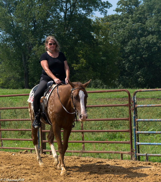 Rolling Hill Equine-2768
