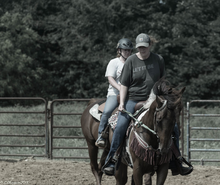 Rolling Hill Equine-2715