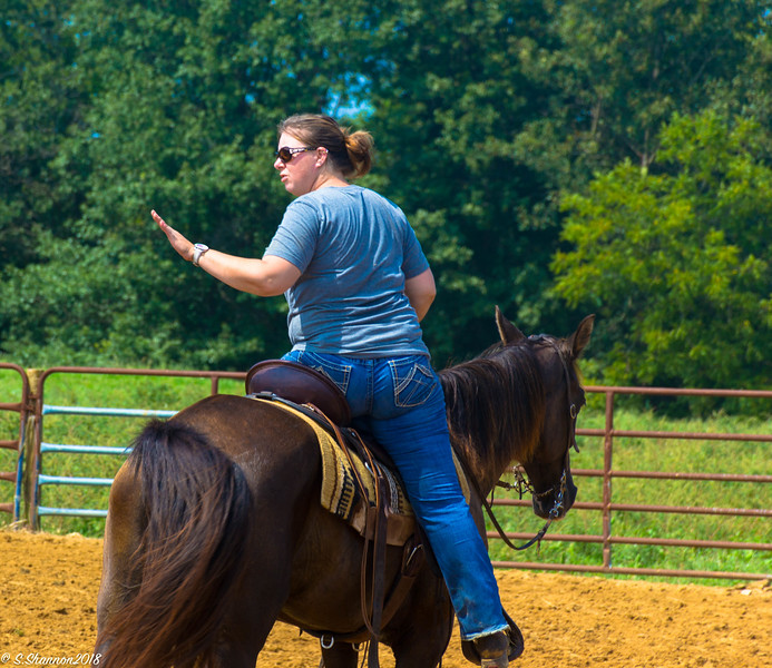 Rolling Hill Equine-2744