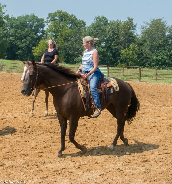 Rolling Hill Equine-6489