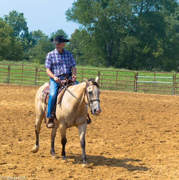 Rolling Hill Equine-2707