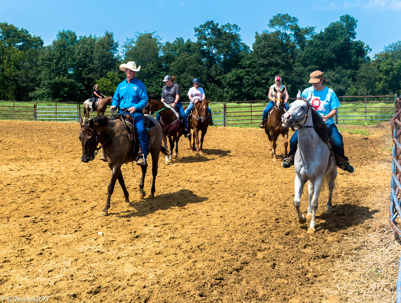 Rolling Hill Equine-2718