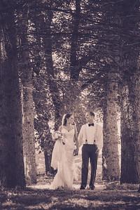 Scott & Molly's Wedding-0015