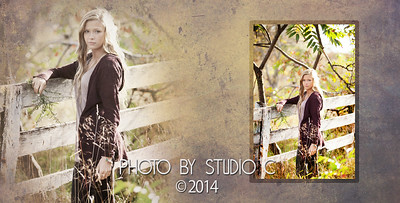 Lindsay's Album_-13