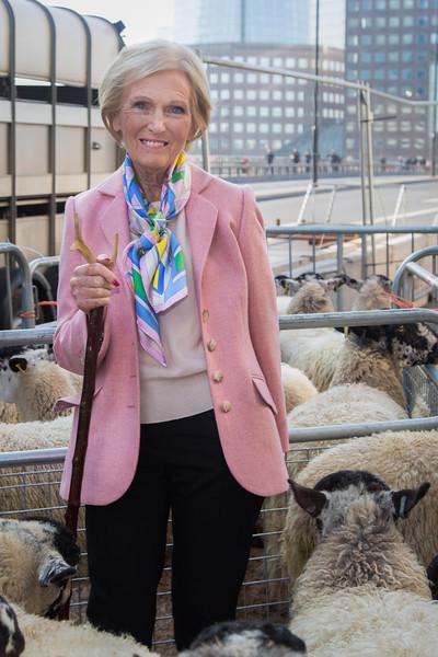 Mary Berry leads London Bridge sheep drive