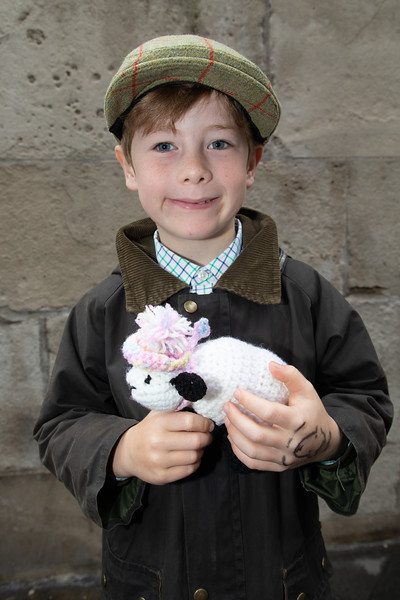 Young boy at London Bridge Sheep Drive