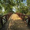 Shoal Creek Pedestrian Bridge