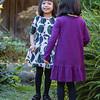 The-Sinha-Family-Japanese-Garden-77