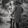 The-Sinha-Family-Japanese-Garden-78