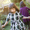 The-Sinha-Family-Japanese-Garden-80