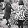 The-Sinha-Family-Japanese-Garden-82