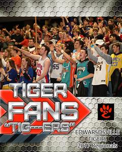 Tiger Fans
