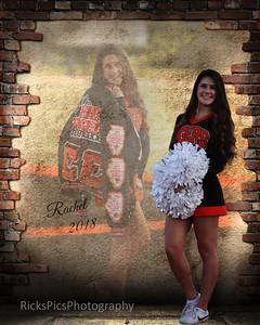 16x20-Rachel duel image