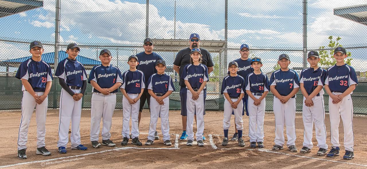 TP-2015 Dodgers