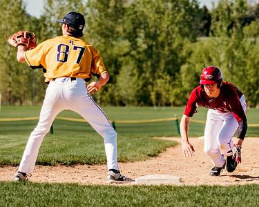 Lakeville S Baseball vs Prior Lake 9A-24
