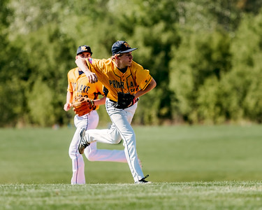 Lakeville S Baseball vs Prior Lake 9A-2