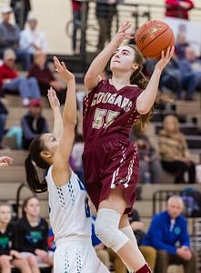 Lakeville S vs Eagan Basketball-22