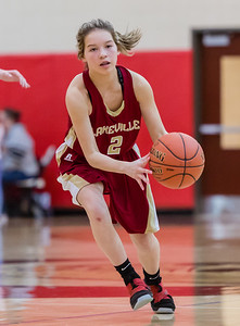 Lakeville S vs Eagan Basketball-12