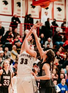 Lakeville S vs Lakeville N Basketball-4