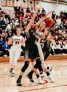 Lakeville S vs Lakeville N Basketball-7