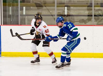 Lakeville S vs Eagan JV 2-14