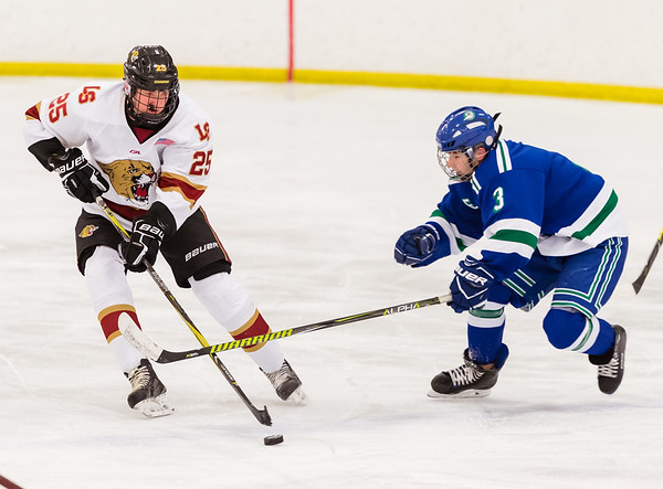 Lakeville South vs Eagan JV 2