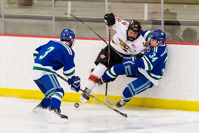 Lakeville S vs Eagan JV 2-21