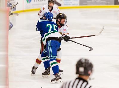 Lakeville S vs Eagan JV 2-9