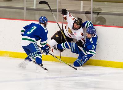 Lakeville S vs Eagan JV 2-22