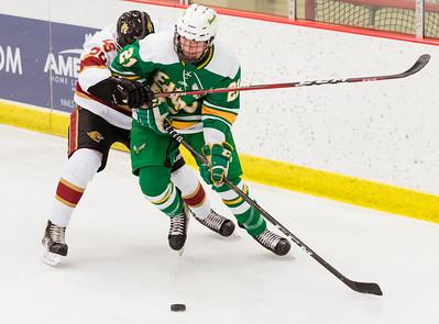 Lakeville S vs Edina JV-20
