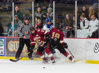 Lakeville S vs Eagan Varsity-16