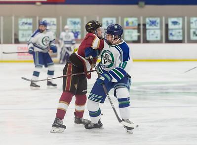 Lakeville S vs Eagan Varsity-3