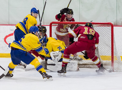 Lakeville S vs Hastings Varsity-14