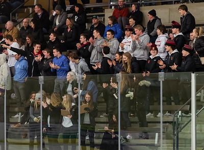 Lakeville S vs Rochester Mayo Varsity-22