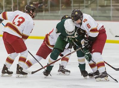 Lakeville S vs Rochester Mayo Varsity-24