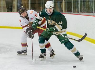 Lakeville S vs Rochester Mayo Varsity-25