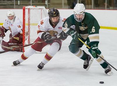 Lakeville S vs Rochester Mayo Varsity-26