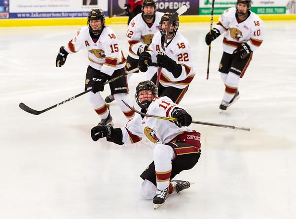 High School Hockey 2018-2019