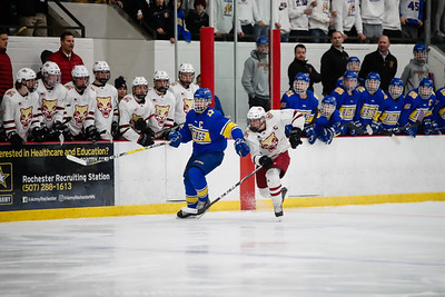 Lakeville South vs Hastings Section Final-25