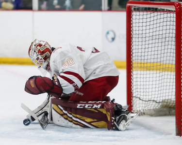 Lakeville South vs Hastings Section Final-16