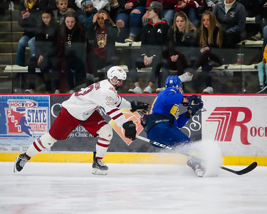 Lakeville South vs Hastings Section Final-9