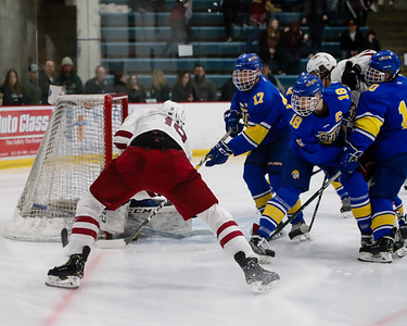 Lakeville South vs Hastings Section Final-22