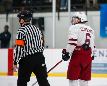 Lakeville South vs Hastings Section Final-5