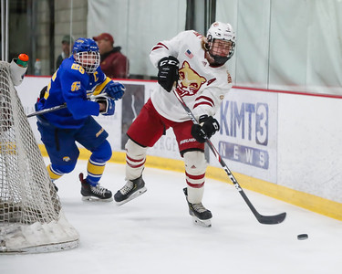 Lakeville South vs Hastings Section Final-6